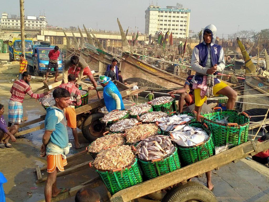 চট্টগ্রামের নতুনফিশারি ঘাট মাছ বাজারে